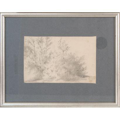 MIR Y TRINXET, Joaquín (Barcelona, 1873-1940). Dibujo a carboncillo sobre papel.