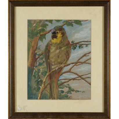 ¨Loro¨. E. Vannier. Se trata de una acuarela sobre papel, que aparece firmada por el propio autor en el ángulo inferior izquierdo. Está enmarcado. 29 x 23 cm.