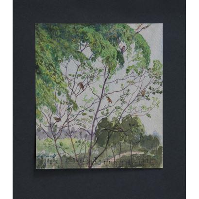 """""""Naturaleza"""", Firma ilegible. Se trata de una acuarela sobre papel guarro, que aparece firmado por el propio autor en el ángulo inferior izquierdo. Medidas: 19,5 x 17 cm."""